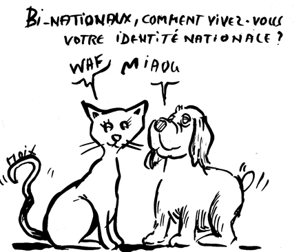 dessin_bi_nationaux.jpg