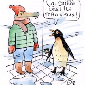 ravi_ferrier_pingouin.jpg